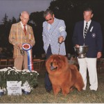 1983 - Best In Show  Westchester Kennel Club  Ch. Wa Hu's Sugar Daddy