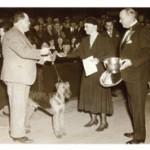 Robert Barlow & Warland Protector of Shelterock - BIS - Westminster KC?1933