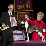 GCh. Everafter's Best Bet Yet