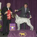 g2 GCh. Mt.View's Ripsnorter Silver Charm