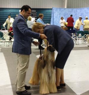 West Volusia Kennel Club – Saturday, September 22, 2012