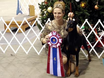 Skokie Valley Kennel Club Dog Show