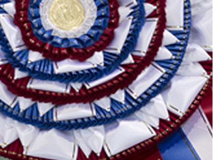 Bis Ribbon Canine Chronicle