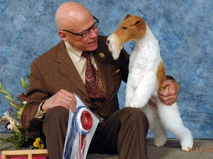 Northern california terrier association show