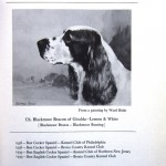 Stud Card Illustrations from The English Cocker Spaniel in America, 1942