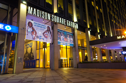 The Fifth Madison Square Garden Canine Chronicle