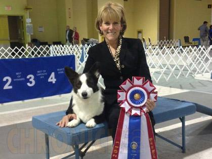 Sandusky Kennel Club Dog Show Columbus Ohio