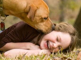 CC Dog Kiss