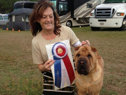 Dog Show Brooksville Fl January