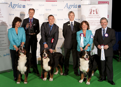 Last year's winners of the Breeders' Competition at Crufts - Meadowpark Bernese Mountain Dogs