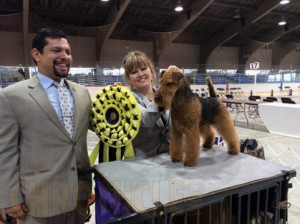Trenton Kennel Club Dog Show