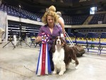 GCh. Cerise Celtic Thunder