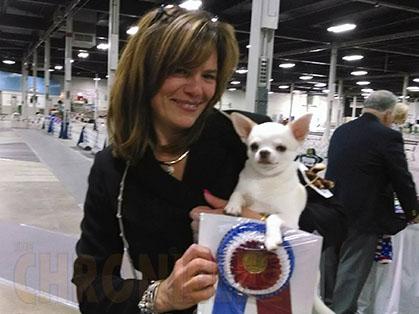 Holyoke Kennel Club Sunday July 6 2014 Canine Chronicle