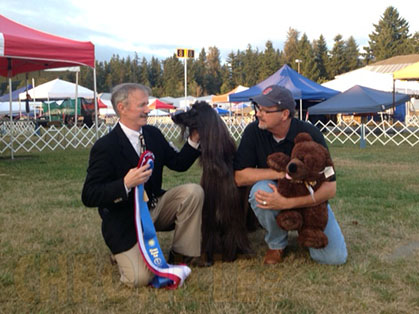 Olympic Dog Show Enumclaw