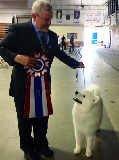 Rochester Mn Dog Show