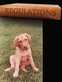 F robinson-regulations_bkg