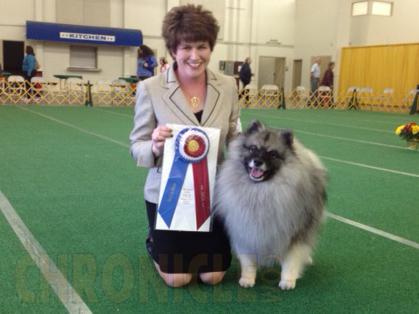 San Joaquin Kennel Club Dog Show