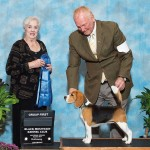 GCh-Torquay-Midnight-Interlude