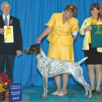 GCh.-Robin-Crest-Rockpoint-Masquerade-JH