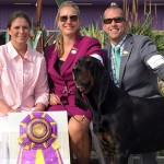 GCh. Windbourne HD Ranch King of The Road