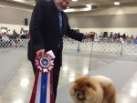 GCh. Eastern Magic Fly Me Safe