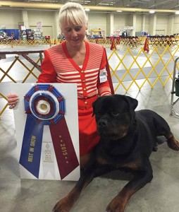 show wins gallery north shore kennel club
