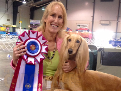 Dog Show In Perry Ga May
