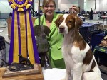GCh. Sovereign's Chasing Legends
