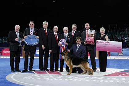 Eukanuba National Dog Show  Live Stream