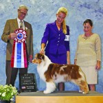 GCH. Coal Dust Love That Lady In Red CM