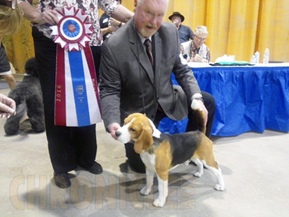 Plum Creek Kennel Club Dog Show