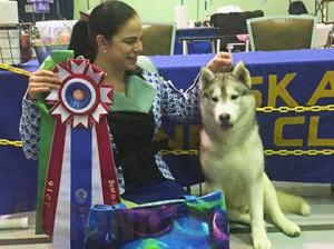 Anchorage Kennel Club Dog Show