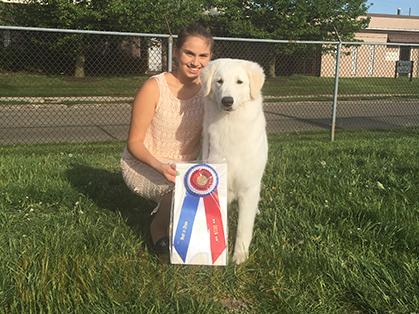 Central Ohio Kennel Club Dog Show