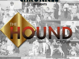 CC_Hound_group_halloffame