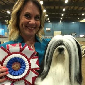 Olympia Dog Fanciers Association Dog Show