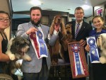GCh Teritails Loyal Knight