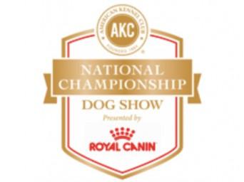 AKC Royal Canin