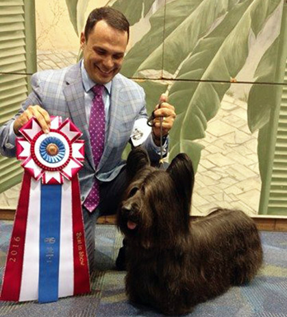 Kenner Louisiana Dog Show