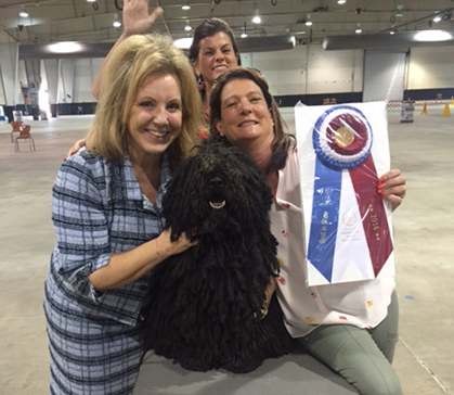 Cary Kennel Club Monday September 5 2016 Canine