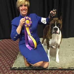 American Boxer Club – Sunday, October 30, 2016 | Canine