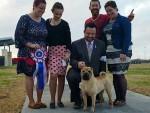 GCHG Brekkukots Allies with Underdog CGC