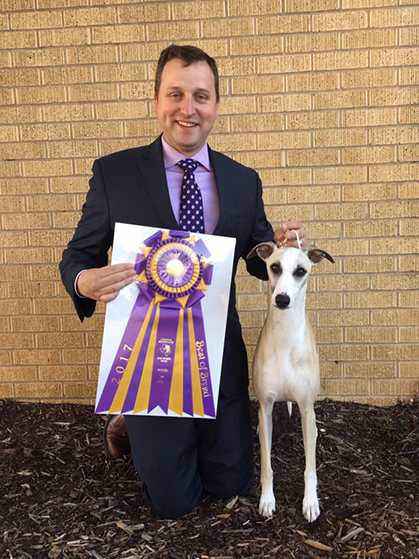 Calendar May Through July : Lone star whippet club friday march canine