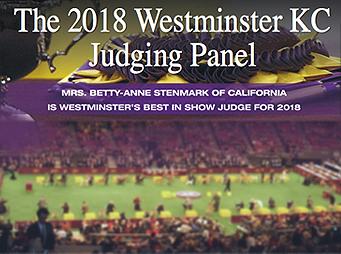 Westminster Dog Show  Judging Panel