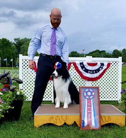 Dog Kennel Saratoga Ny