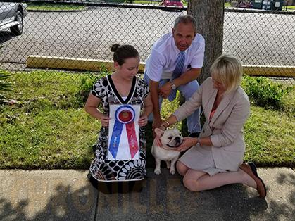 Huntington Kennel Club Dog Show
