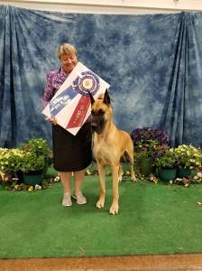 Ann Arbor Kennel Club Dog Show