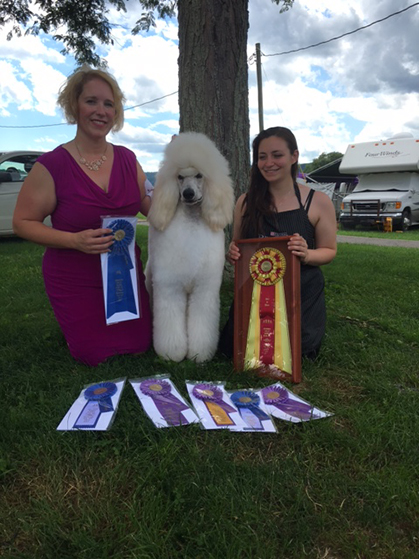 Chenango Valley Kennel Club Saturday July 1 2017 Canine Chronicle