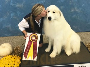 Annapolis Kennel Club Friday October 27 2017 Canine