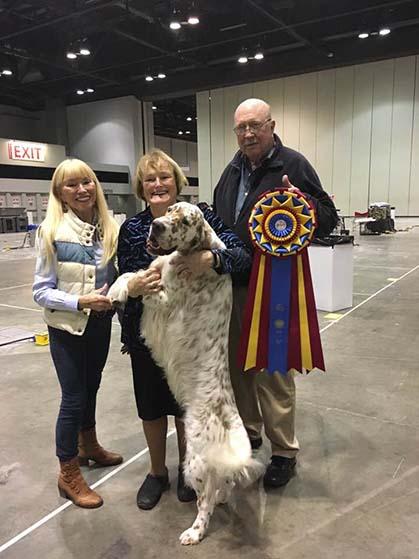 National Dog Show Results  Gordon Setter