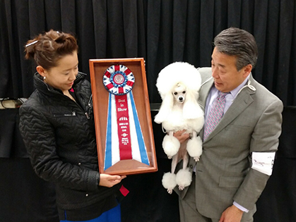 Sand And Sea Kennel Club Friday January 19 2018 Canine Chronicle